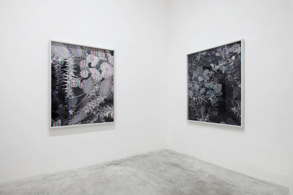 Installation view, Damon Zucconi, Spiritual Door, Veda