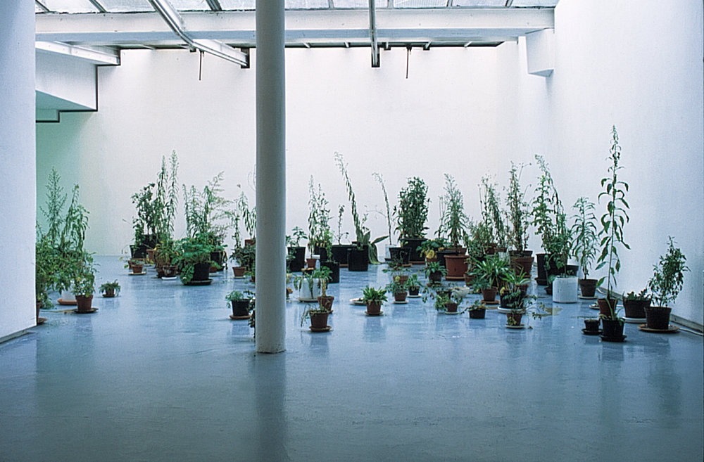 Exhibition view of « La géométrie des terrains vagues » by Yves Grenet, Valentin, Paris, 2000  courtesy of the artist and Valentin gallery, Paris