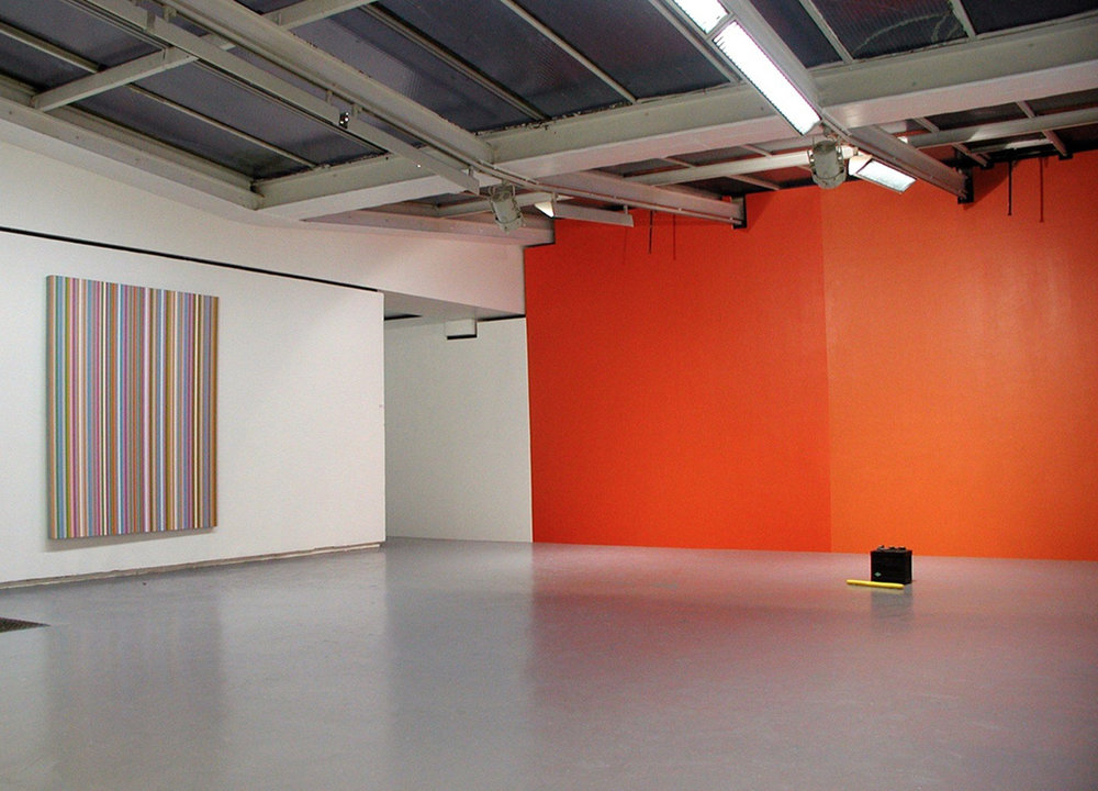 Exhibition view of « J'en ai pris des coups mais j'en ai donné aussi », Bridget Riley, Bertrand Lavier and Jean-Michel Sanejouand (with John Armleder, Franck David, Noel Dolla, Liam Gillick and Robert Malaval), Valentin, Paris, 2002  courtesy of the artists and Valentin gallery, Paris