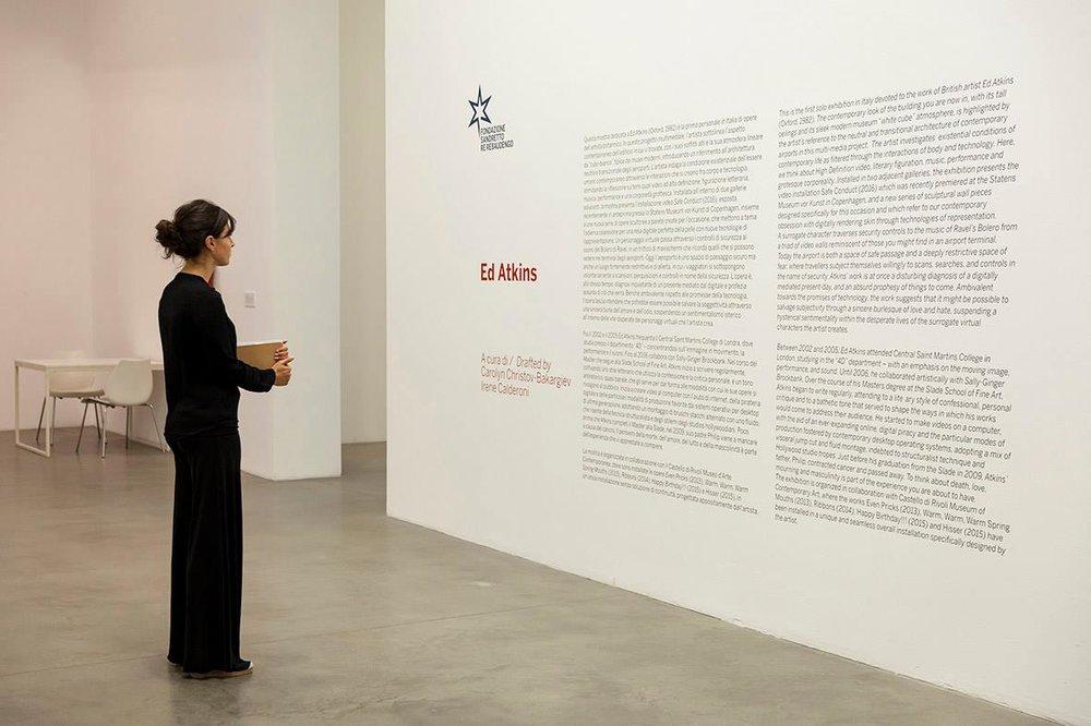 Ed Atkins at Fondazione Sandretto Re Rebaudengo during Artissima.