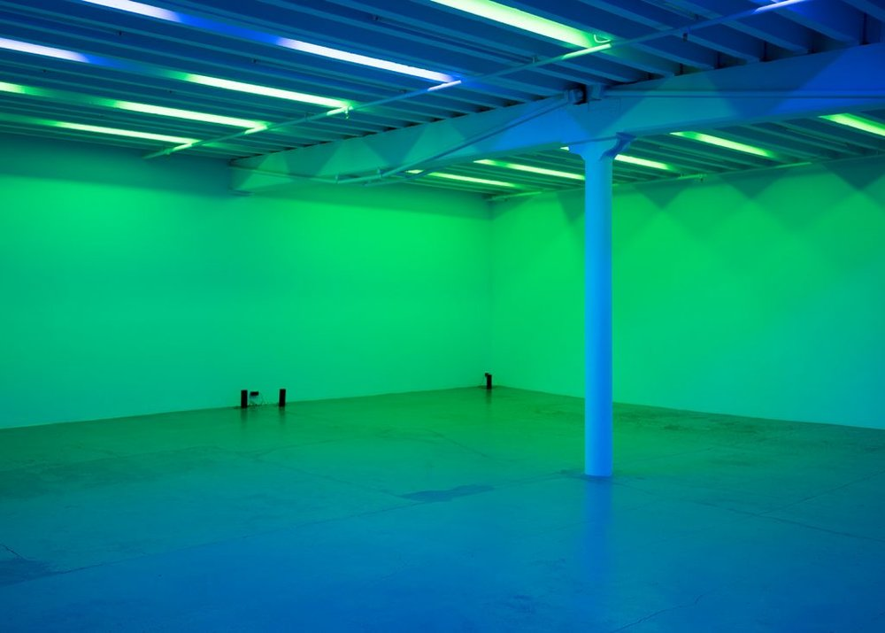 Installation view, Pamela Rosenkranz, Anemine, Miguel Abreu Gallery