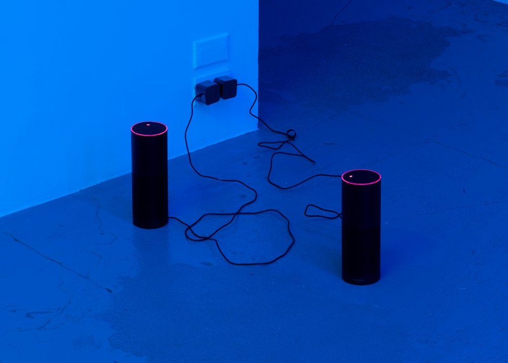 Installation view, Pamela Rosenkranz,Anemine,Miguel Abreu Gallery