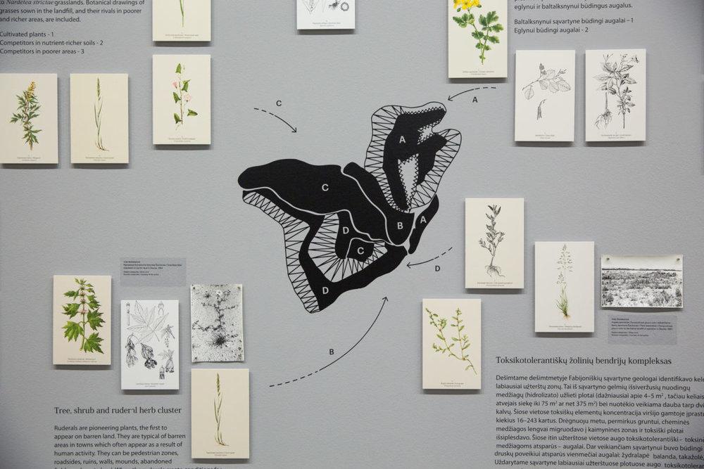 Vida Motiekaitytė,Urbophytocoenoses: Syntaxonomy, Toxicotolerance, Successions, Functions. Vilnius: Institute of Botany, 2002
