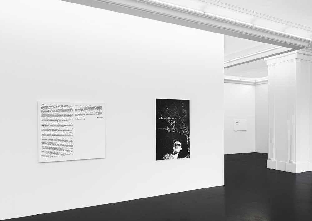 Installation view, Dean Sameshima, 647(a), Peres Projects