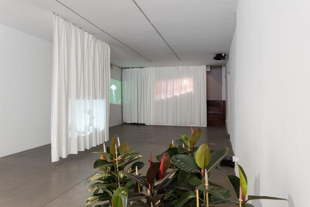 Installation view, Cosmic Words, Galeria Boavista