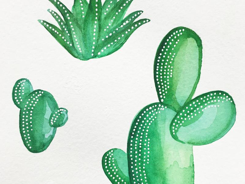 cacti3.png