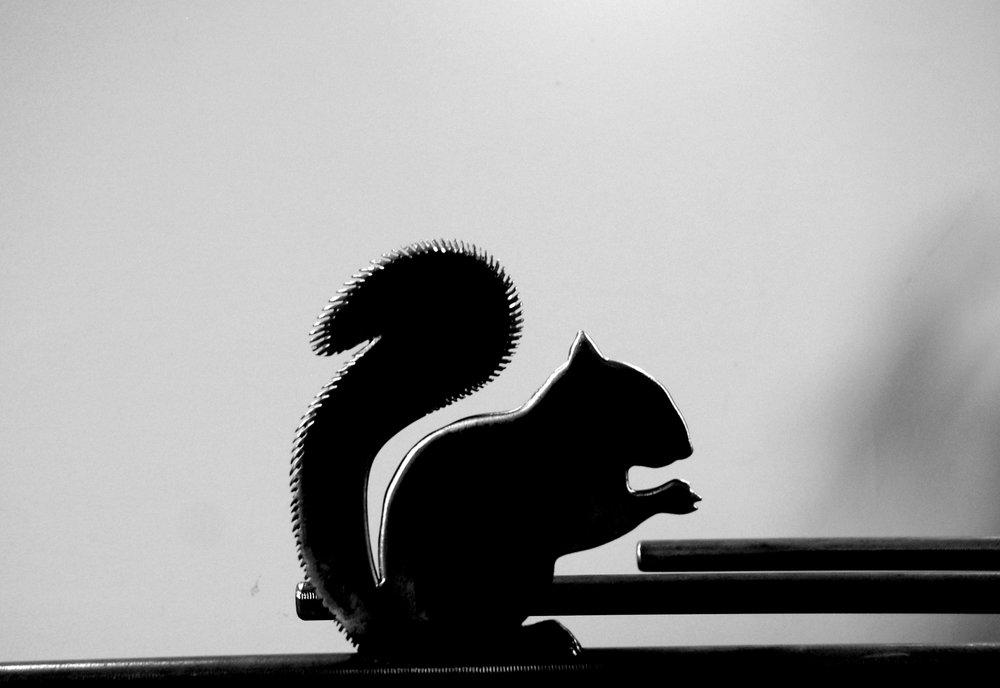 Squirrel detail from Pergola