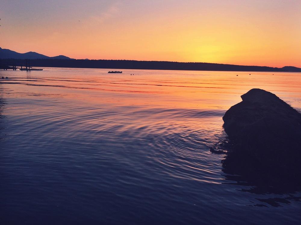 amelia wachtin sunset