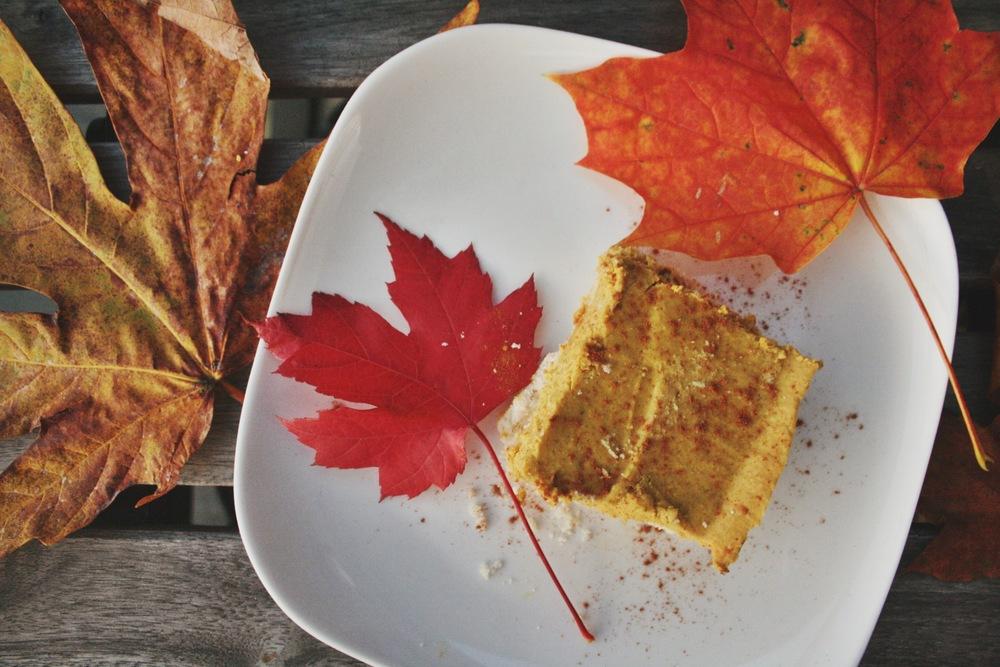 amelia wachtin pumpkin cheesecake
