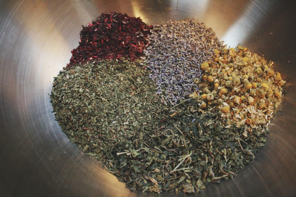 amelia wachtin herbal tea