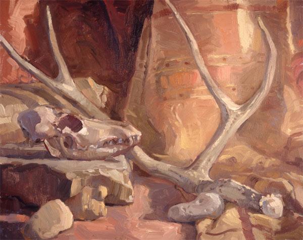 coyote-skull.jpg