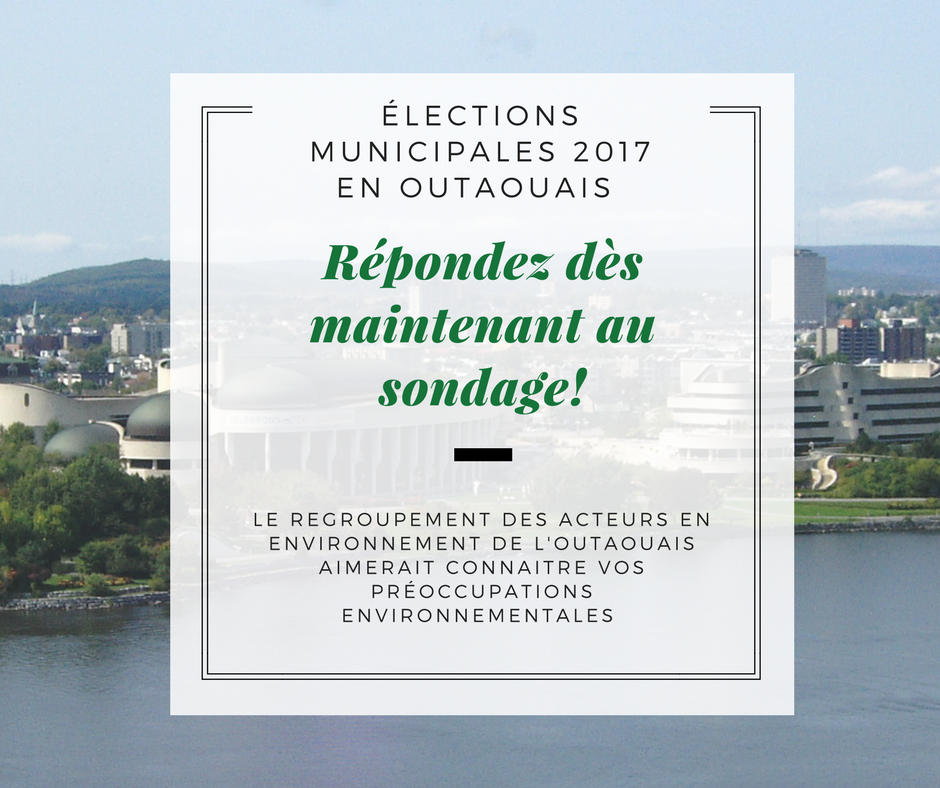 Publication FB élections municipales version 2.png