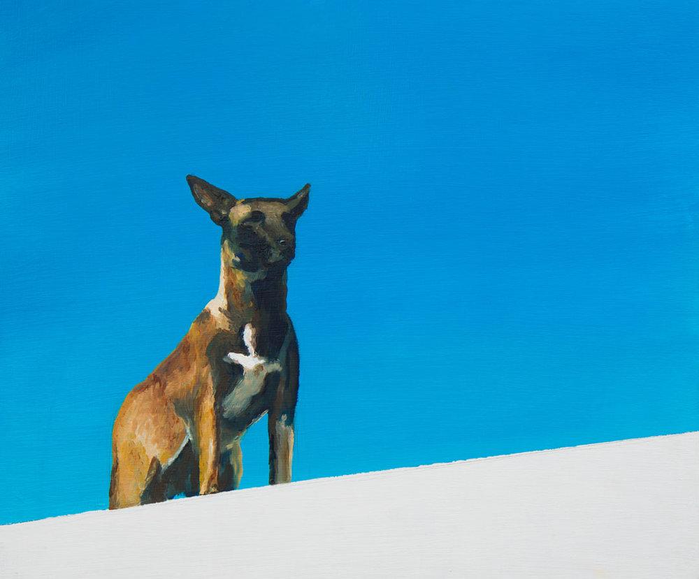 Untitled Dog (Myriorama)