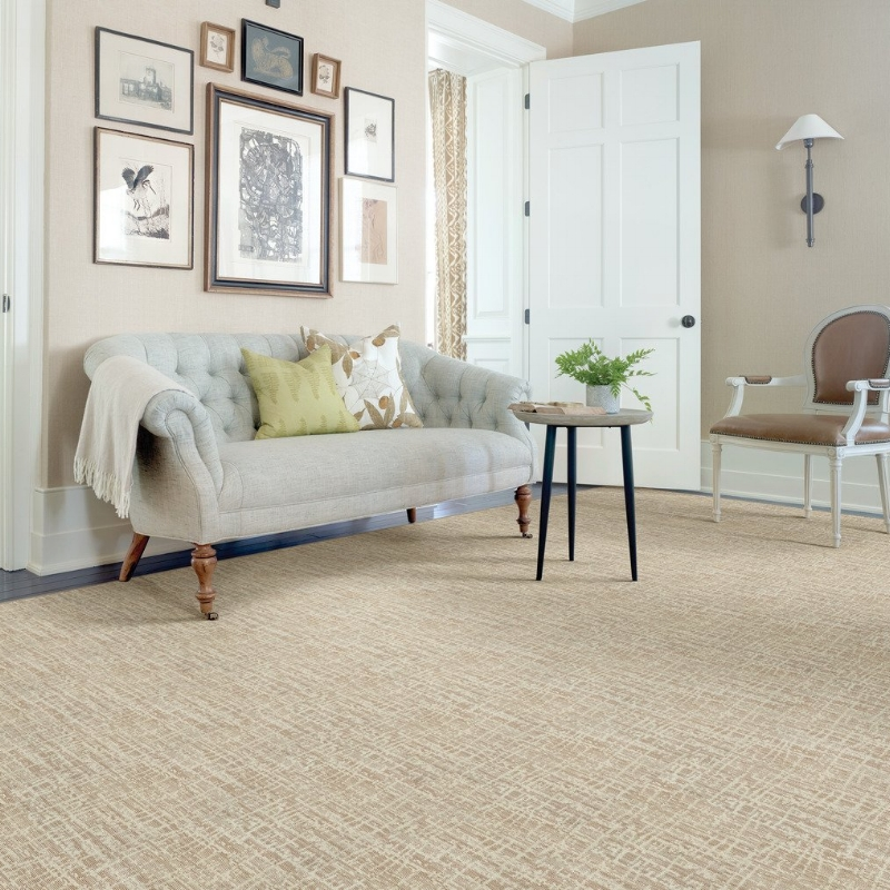 Carpets & Rugs -