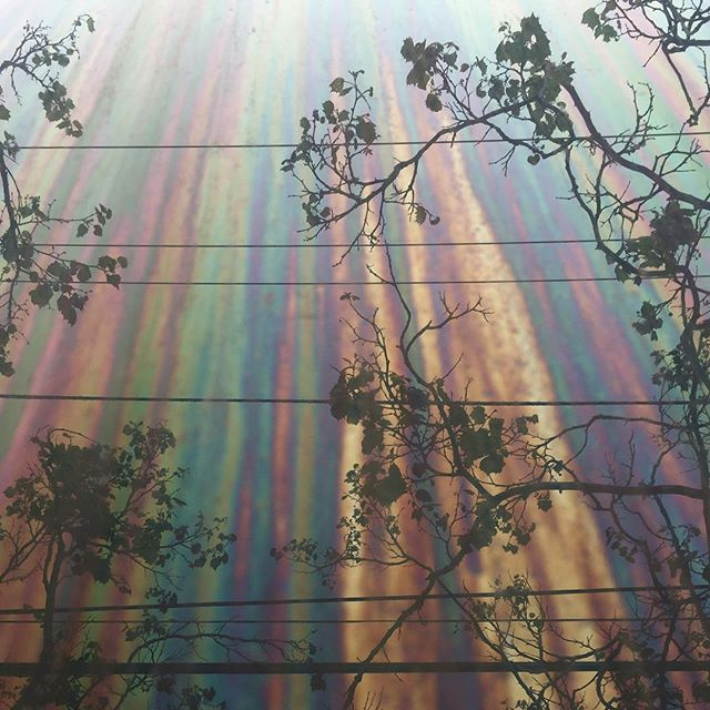 Inspiration is everywhere. Found this beautiful reflection on the side of an oil slicked building.
