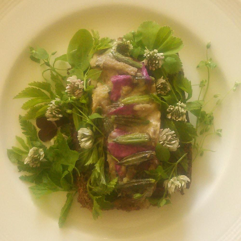 Heltvill salat og rosemakrell