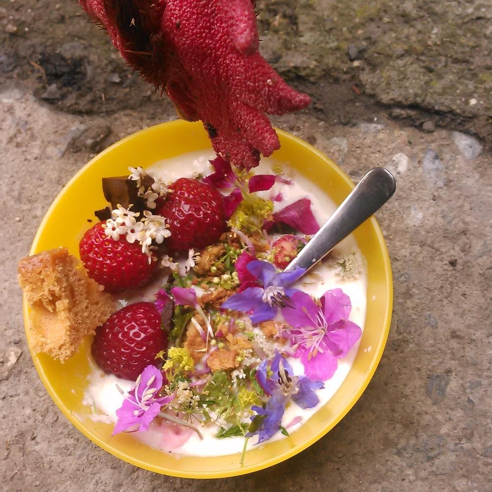 Blomstrende bondepiker mm