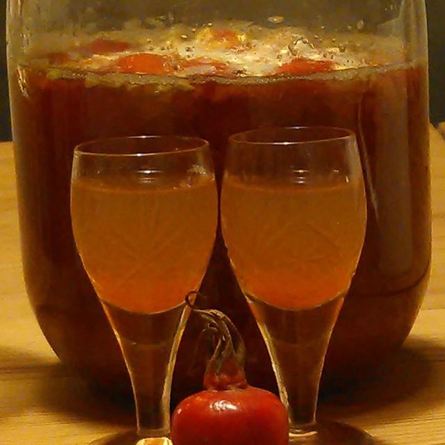 En himmelsk drikk - Fermentert nype