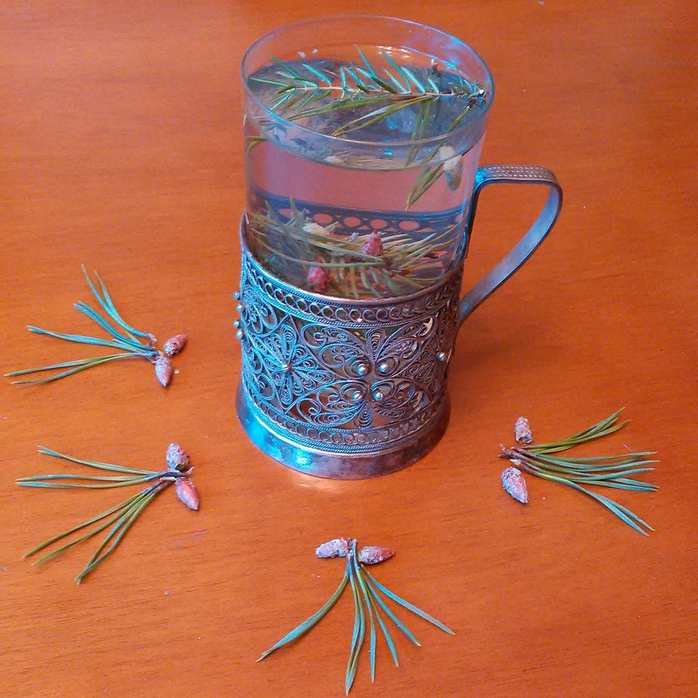 En kopp te av furu, gran og einer søtet med granskuddssukker