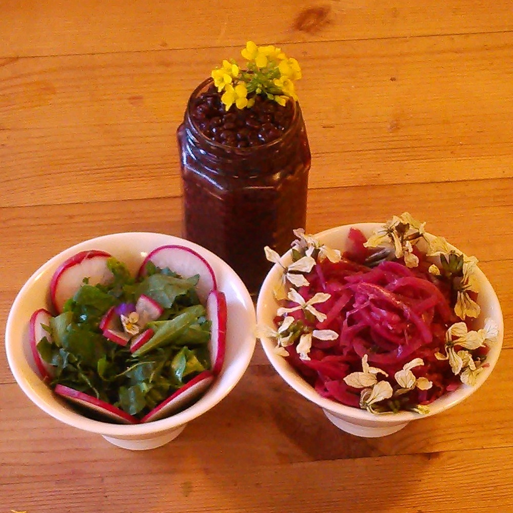 Dagens middagstilbehør: 1. asiatiske salater, gjetertaske, pengeurt,daikon og med en nattogdag blomst på toppen 2. melkesyregjæret hyllebærchutney med namenia blomst 3. melkesyregjæret rødløk med ruccolablomster. Alt fra Øverland