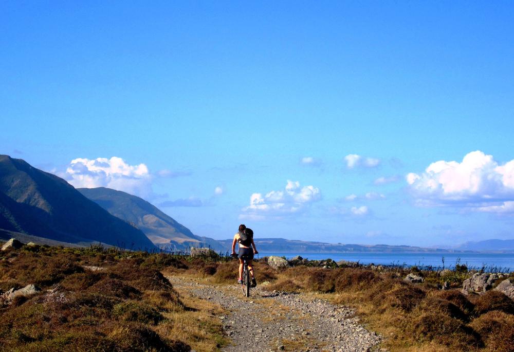 Wild Coast - Turakirae Head.jpg