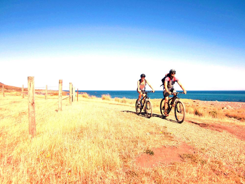 Wild Coast - Orongorongo.jpg