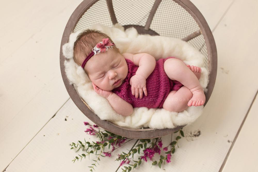 bailey, iowa newborn photographer, newborns, newborn posing, baby girl, hull, iowa, jessica bonestroo photography