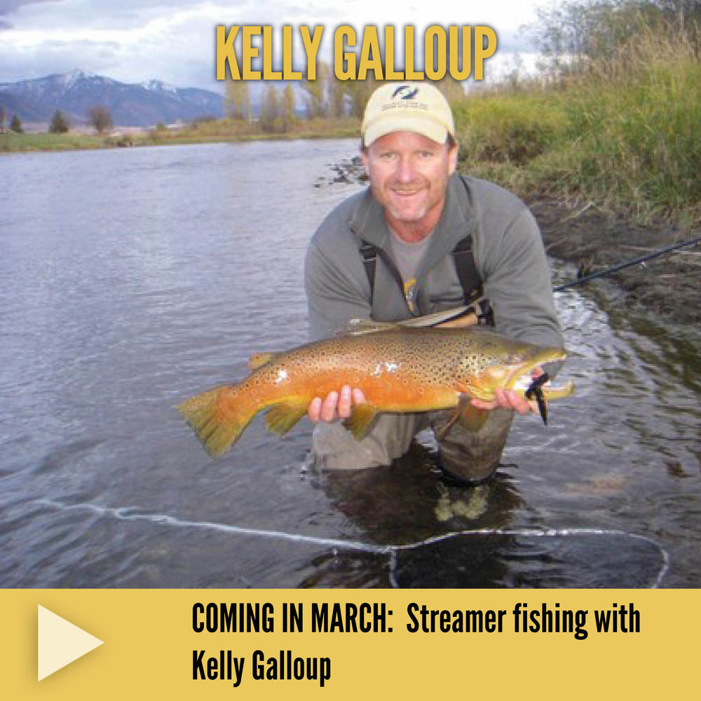Kelly Galloup streamers