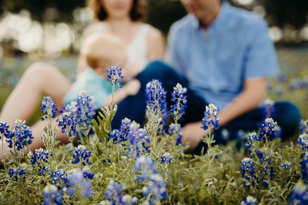 Bluebonnet Photos! -