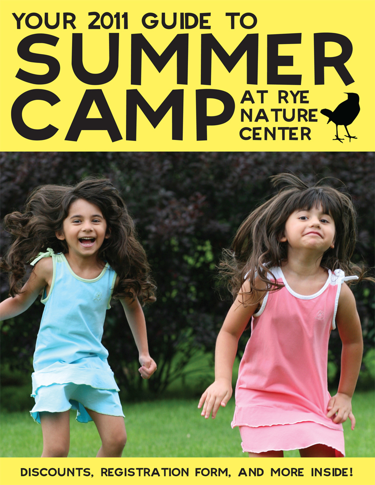Client: Friends of Rye Nature Center Job: Summer Camp brochure cover