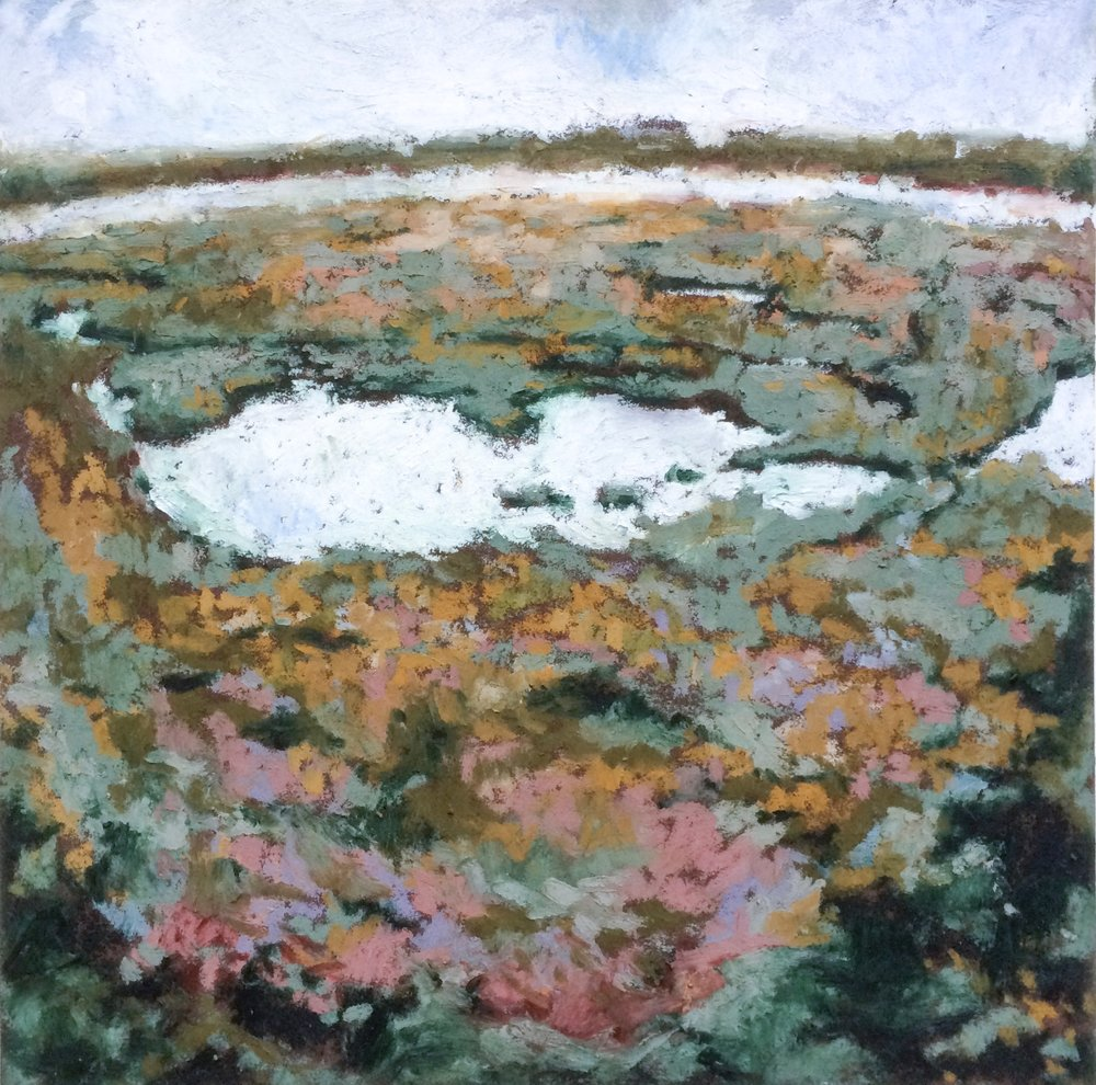Marshland  Oil Pastel on Sennelier Carte  8.4x8.5  2018