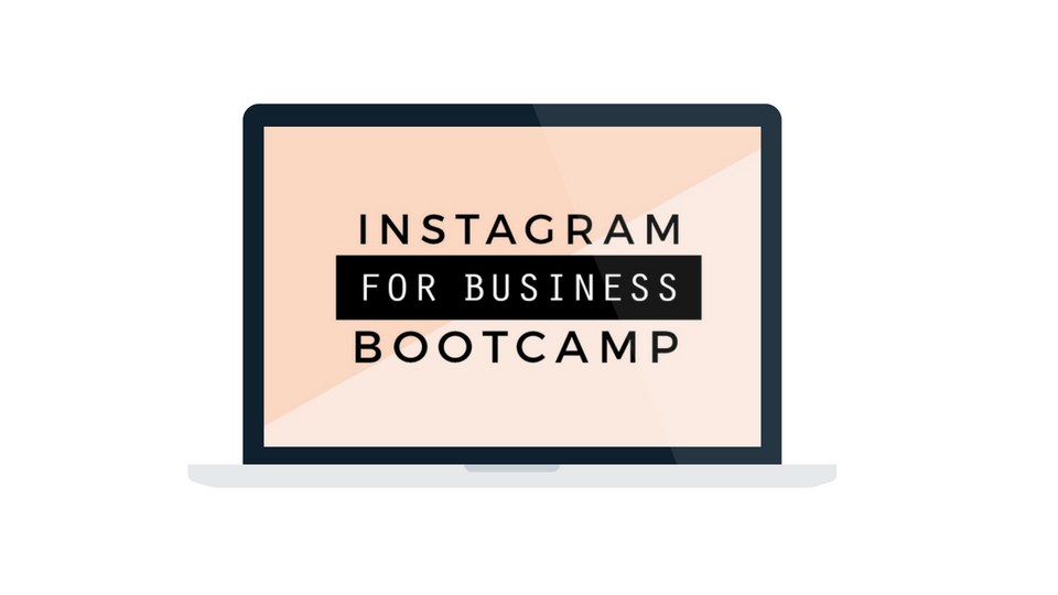 Instagram for business bootcamp- learn to use Instagram to grow your email list + make more money!