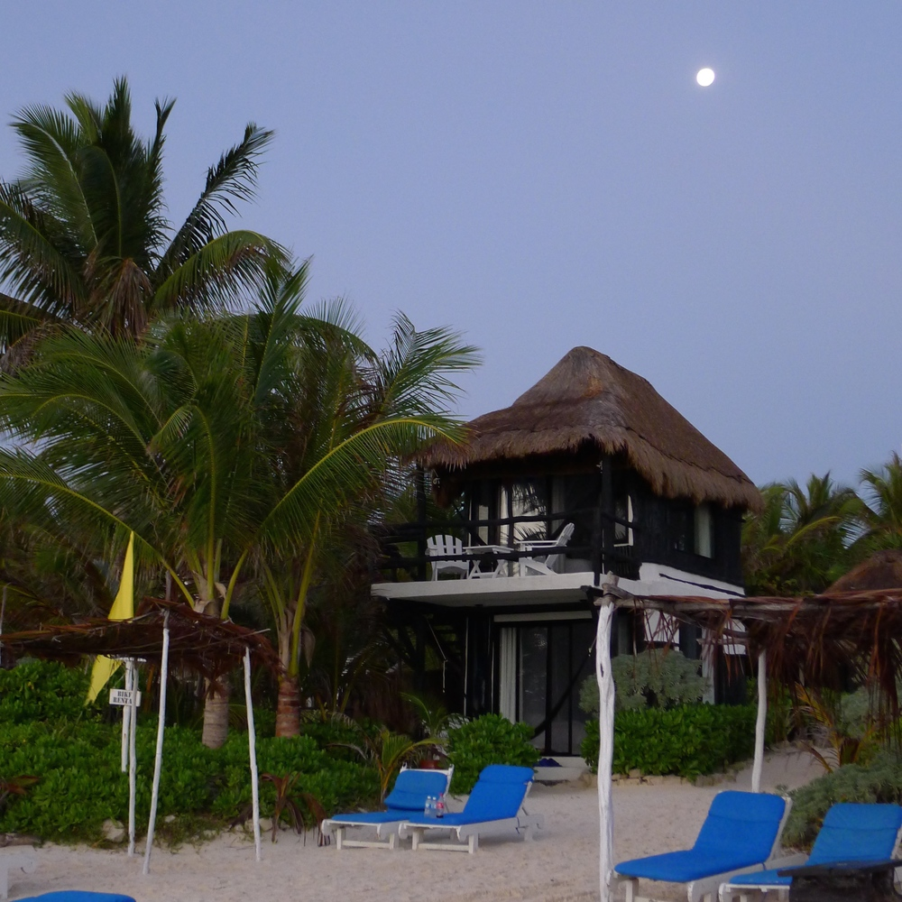 Full moon in Aquarius / Coco Tulum / Photography by Amy Flyntz