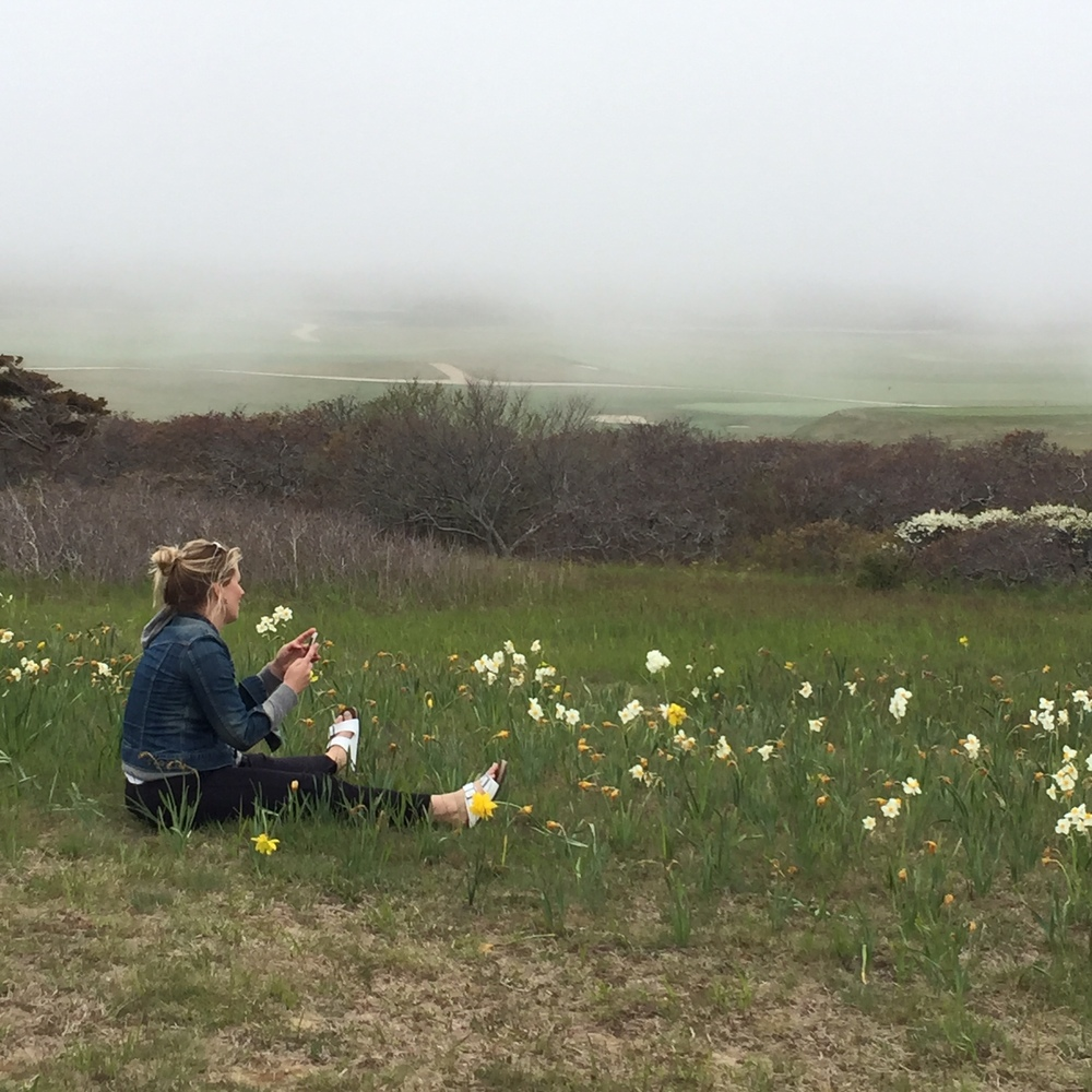 Playing in the Daffodils. Sankaty Head. Photo courtesy of Gianne Doherty.