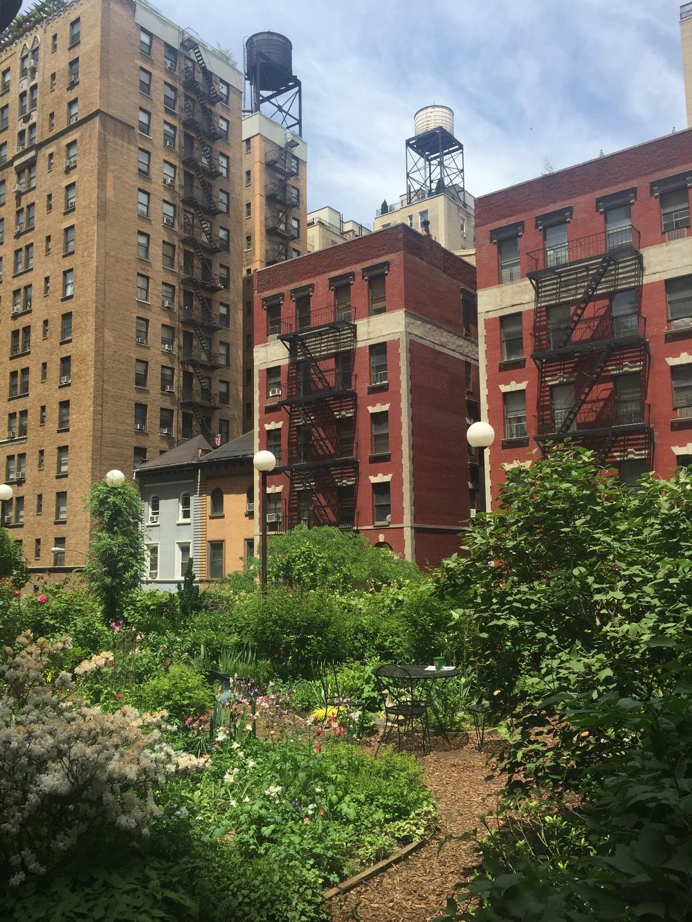 "My beloved neighborhood's ""secret"" garden. Location shall remainon the DL. I'm no fool."