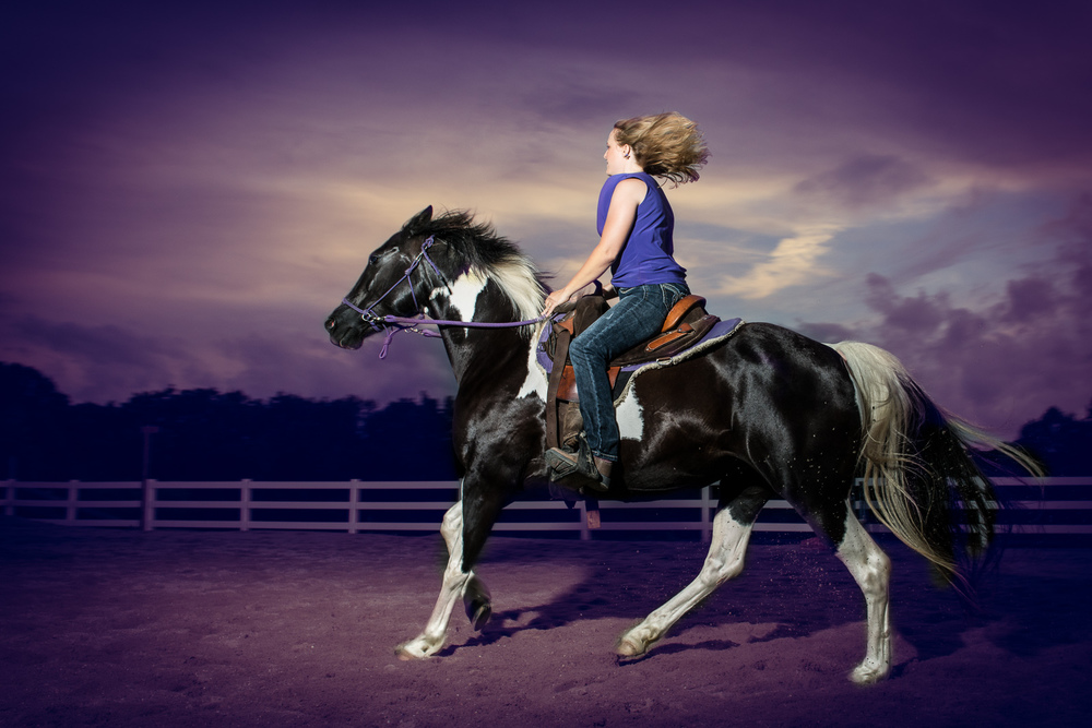 Jennifer.DiDio.Photography.Wimmer.horse.2013-147-Edit-2.jpg
