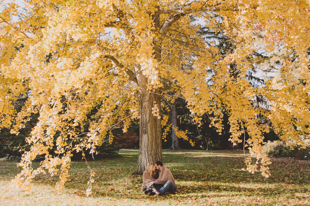 planting fields arboretum state park engagement photography
