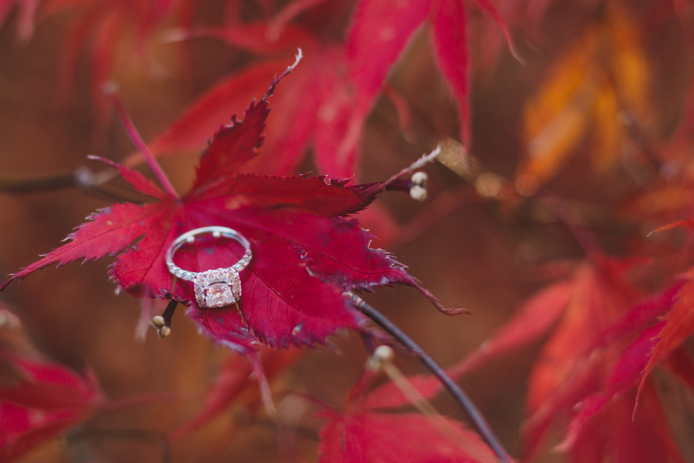 gorgeous engagement ring with fall props