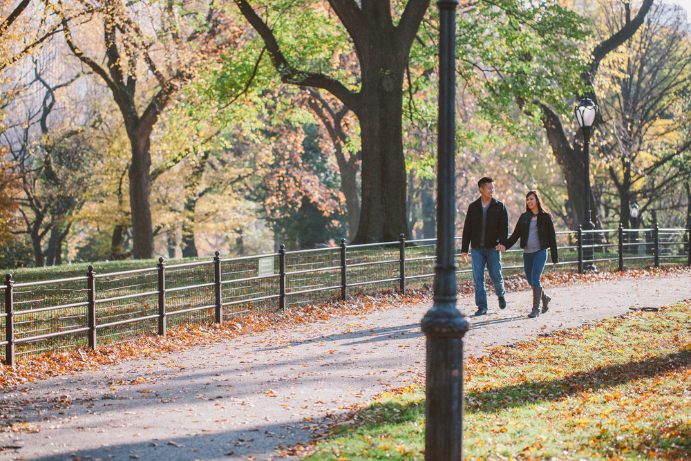 fall colors engagement photography central park