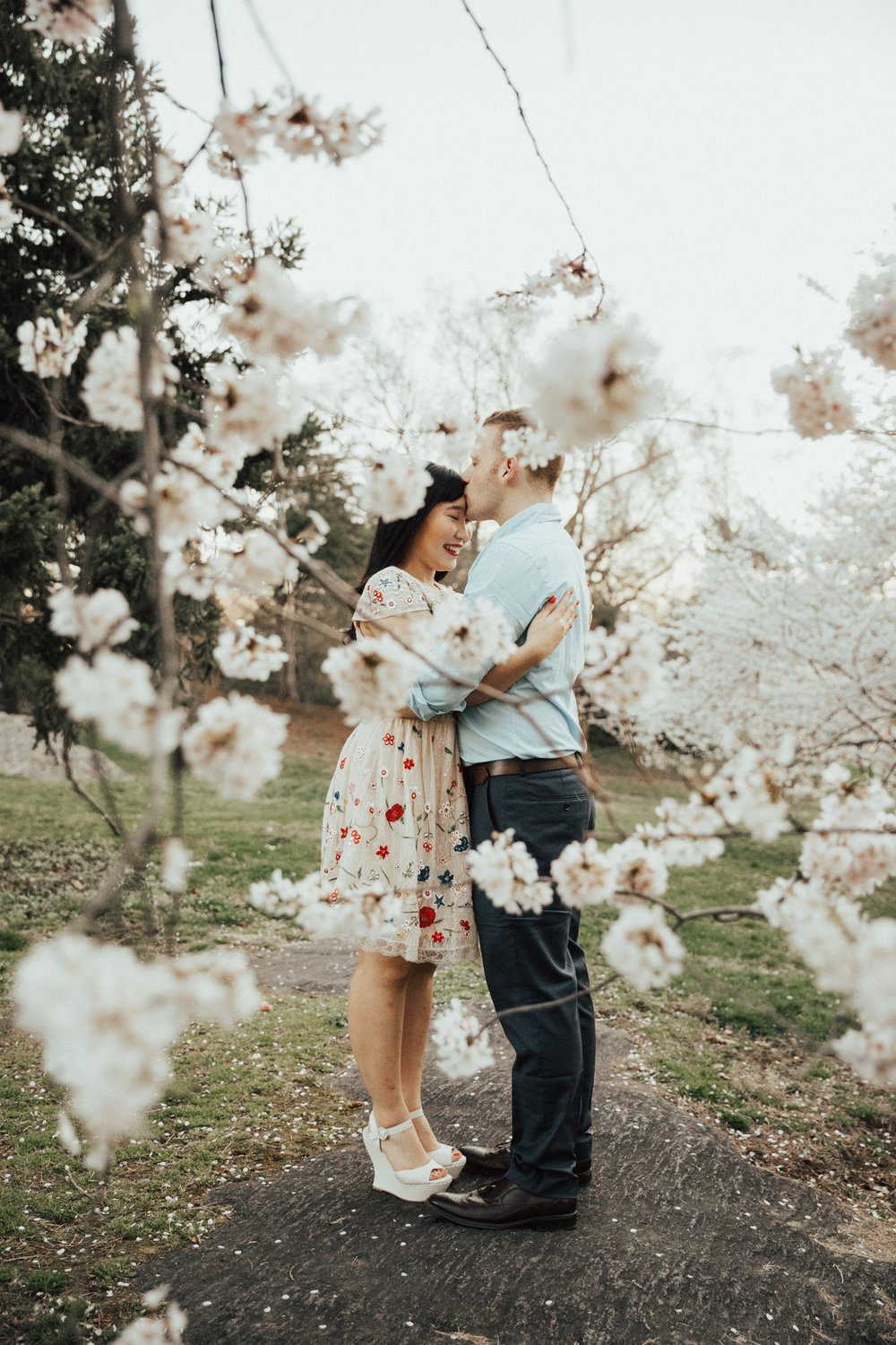 cherry blossom engagement photo