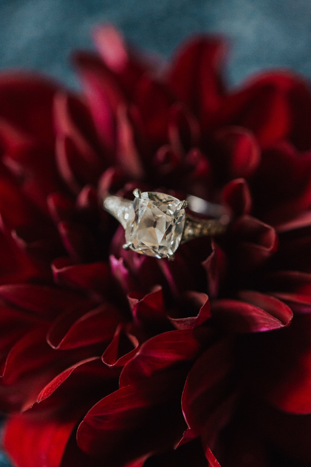engagement ring in flower