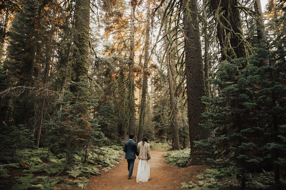 yosemite california elopement