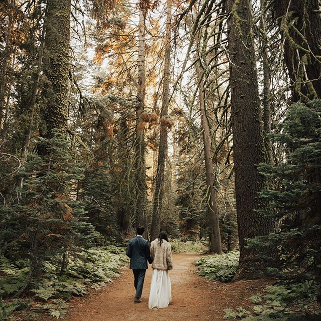 Another throwback to this stunning elopement we photographed in Yosemite last year. 😍 • • • • • • • #newyorkweddingphotographer#nycweddingphotographer  #newyorkelopement#destinationwedding#elopementcollective #junebugweddings#photobugcommunity #thatsdarling#elopement#buzzfeedweddings #radlovestories #greenweddingshoes  #loveandwildhearts #loversofthelight  #destinationweddingphotographer #weddinglegends #radlovestories #lookslikefilm #couplegoals  #californiaweddingphotographer #graceloveslace #intimateweddingphotographer #belovedstories #anotherwildstory #nycbride #muchlove_ig #lovemywhitemag #yosemite #yosemiteelopement