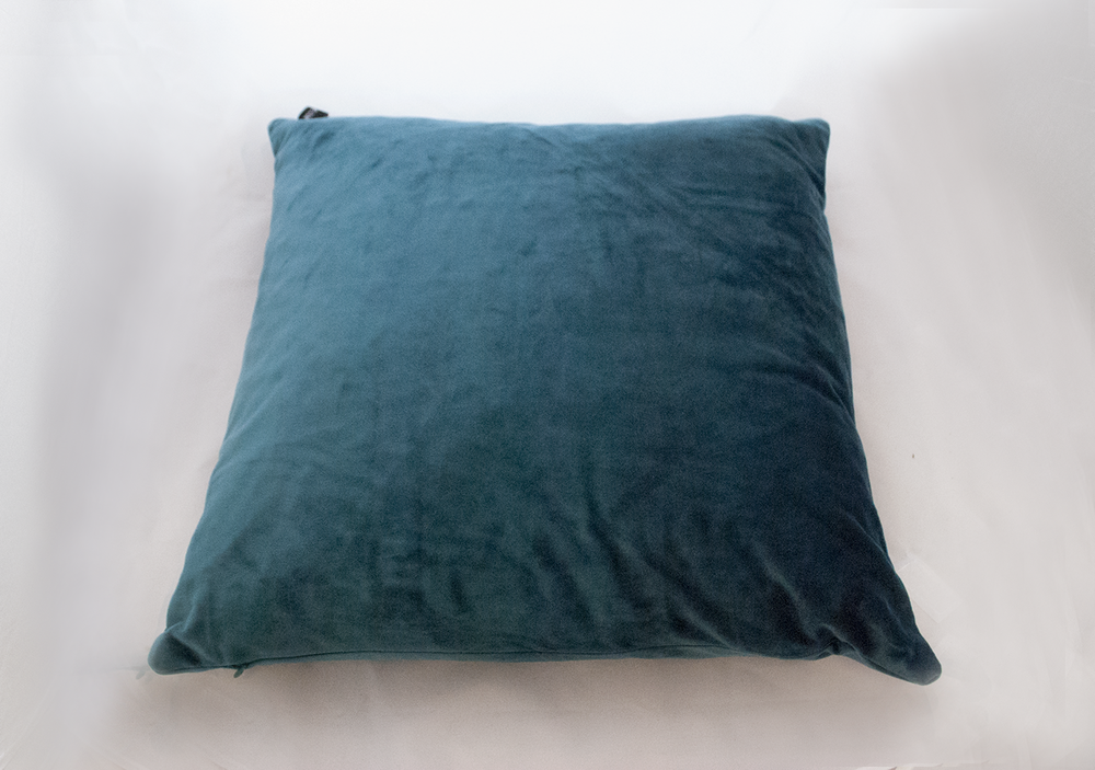 teal velvet pillow   Quantity: 1  Price: $10.00