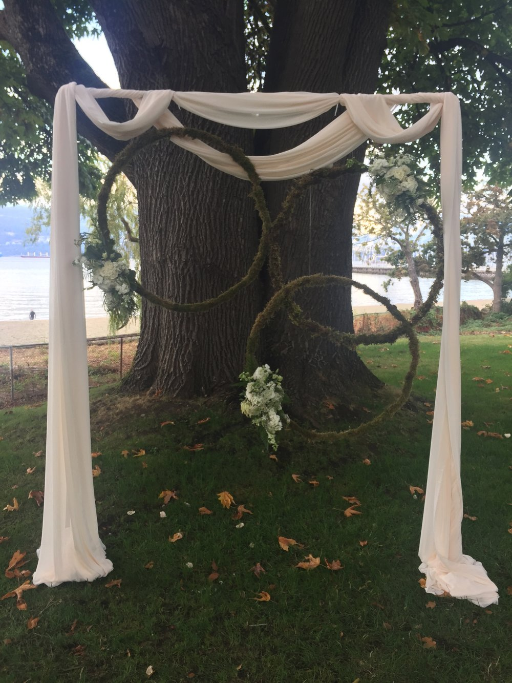 pipe arch + fabric treatment (greenery hoops sold separately)   Quantity: 1  Price: $195.00