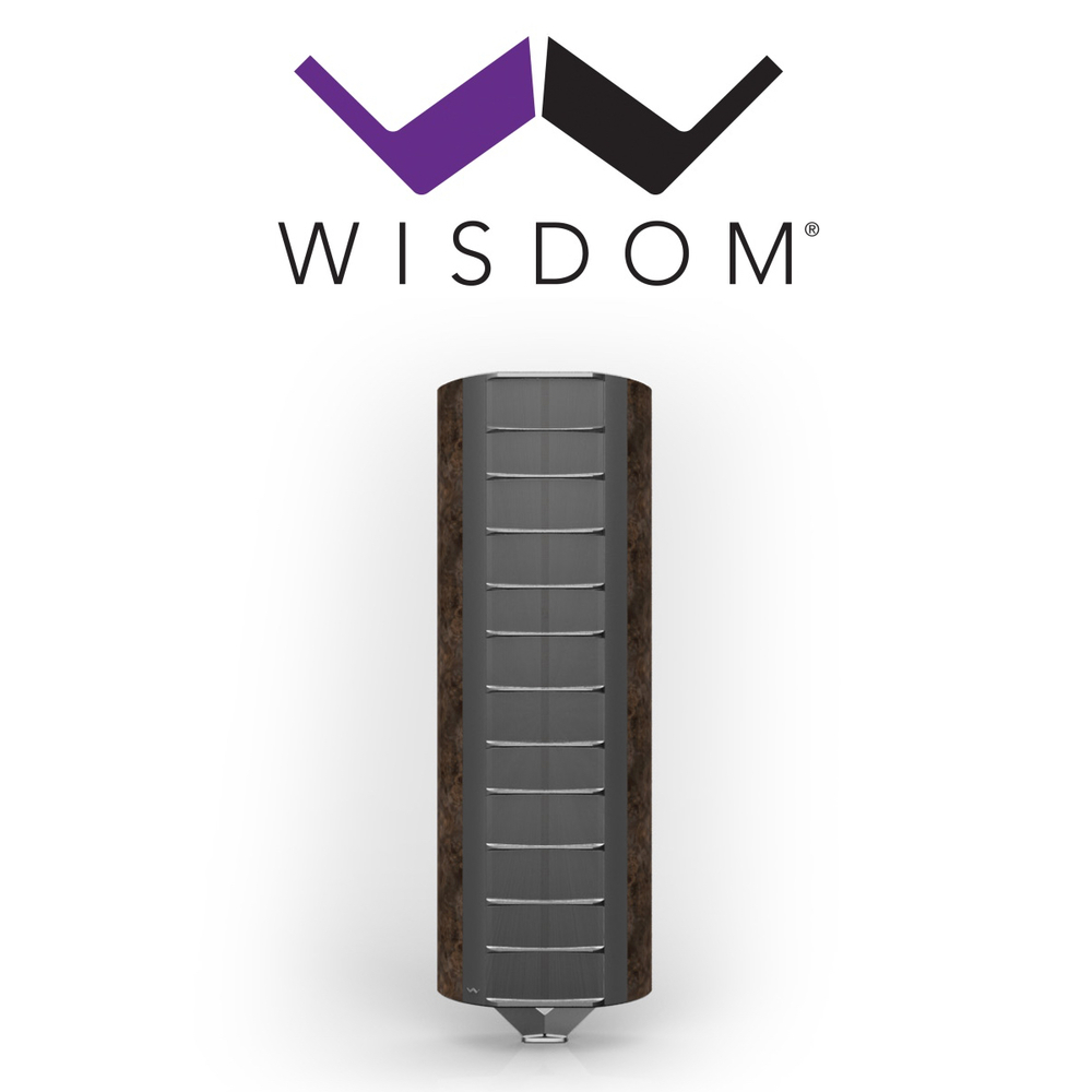 Wisdom Audio.jpg