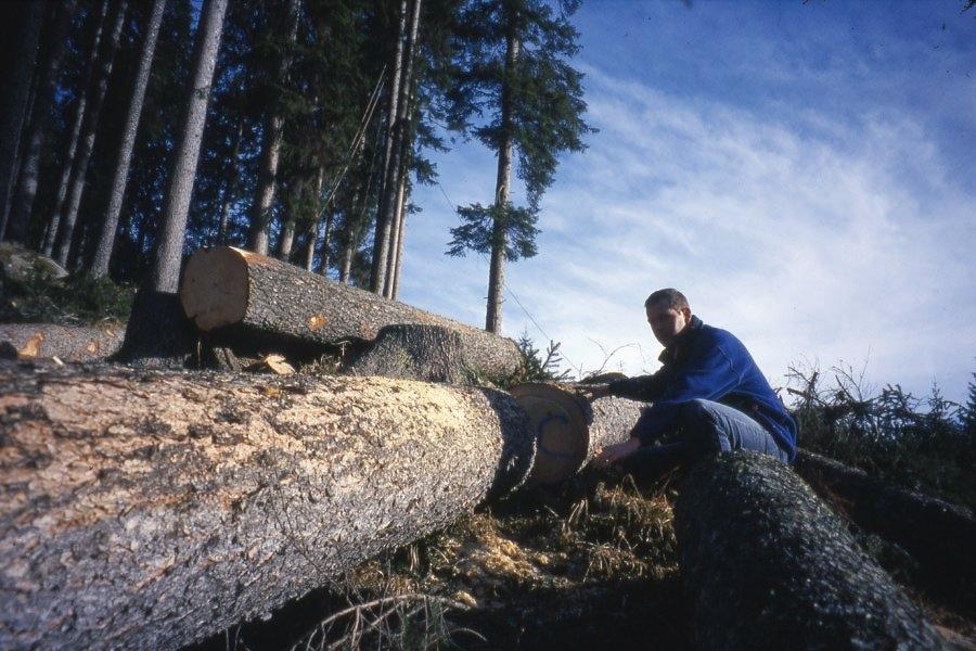 Scelta-tronchi-liuteria-Ognibeni-2001-m6bhjgaxxr4tnjgfs9wdylz9qvf7tkp5oezt6oyf00.jpg