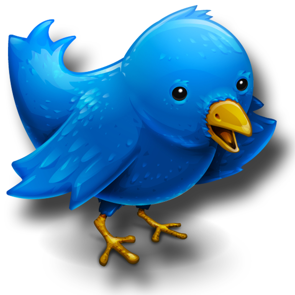 logo-wallpapers-twitter-bird-wallpaper-36105.jpg