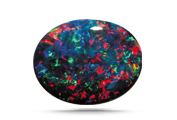 COLOR  Opal's spectacular play-of-color can display all the colors of the rainbow.