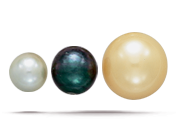 SIZE Cultured pearls range from 2-16mm in diameter, depending on the mollusk used.